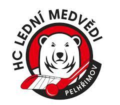 logo Lední medvědi